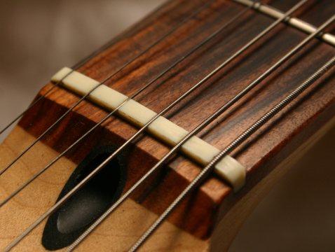 Guitar_nut.jpg